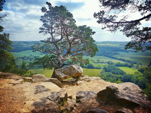 On top of Gibraltar Rock / One of the most amazing views in the Midwest /  Okee, Wisconsin, USA ~j
