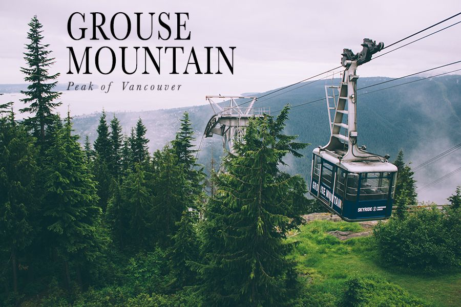 Summer Hike Grouse Mountain