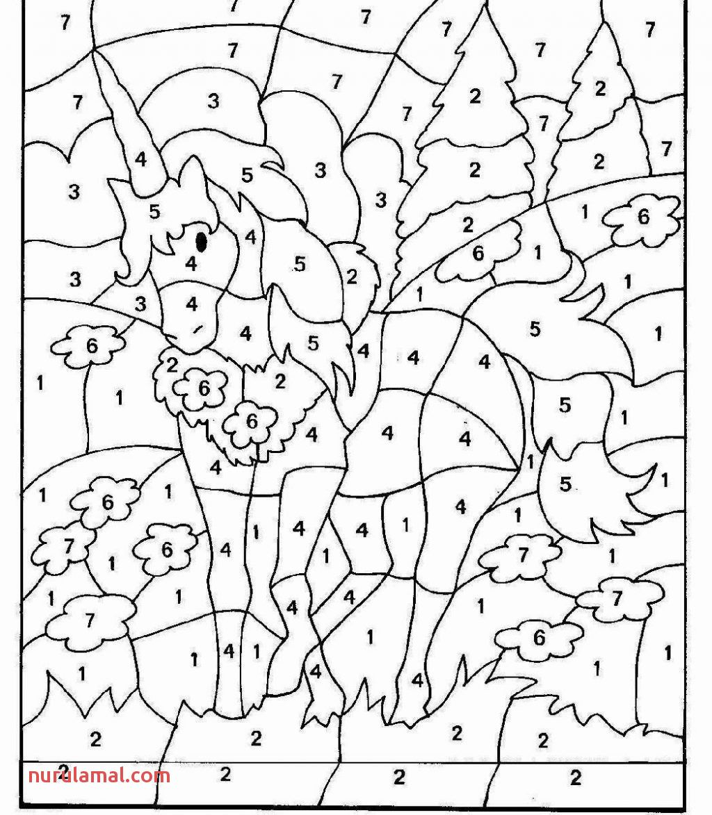 Math Coloring Worksheets 5th Grade In