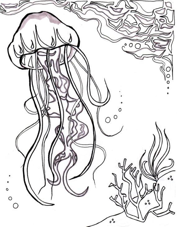 Ocean Life Ocean Pearl Ocean Coloring Pages Printable Adult