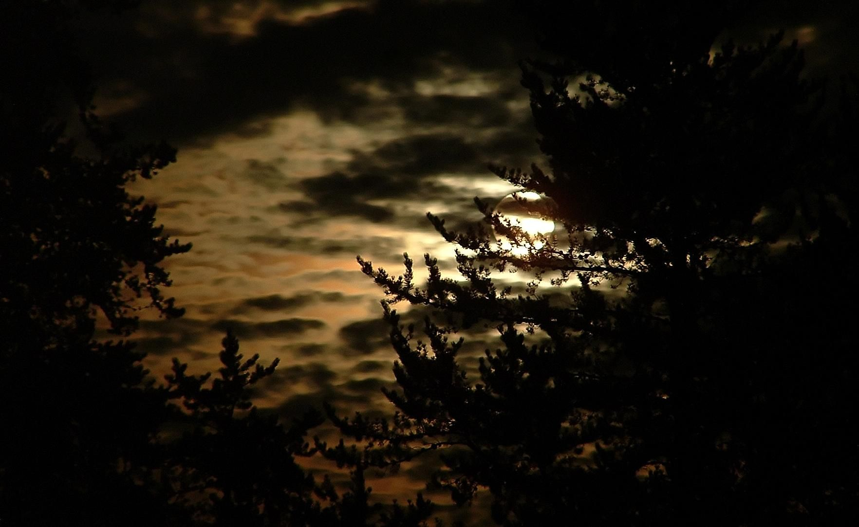 byron darkness