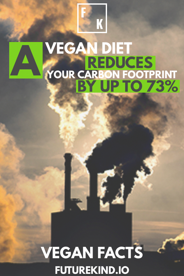 Surprising Vegan Facts You Probably Don't Know Vegans are constantly bombarded by fear & misinformation. Having some vegan eco or vegan health facts in your back pocket can help you in a tricky argument. This article is about more than that though. By understanding the reasons healthy vegans eat the way they do, you can become