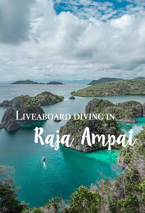 Keen to explore some of the best scuba diving in Indonesia? There is no better way than with a Raja Ampat liveaboard like the Emperor. #indonesia #rajaampat #scuba #diving #wonderfulindonesia #liveaboard