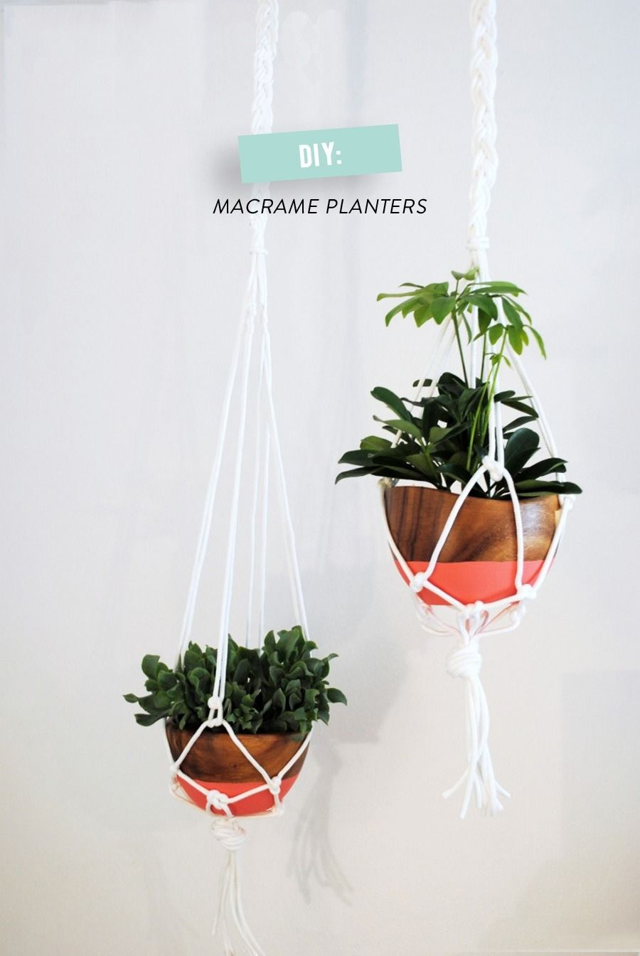 #diy, #potted-plants, #home-decor, #art-projects, #crafting, #plants, #macrame, #hanging, #hanging-planter, #planter