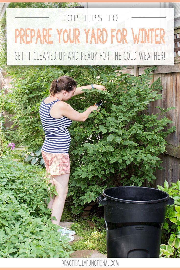 get your yard ready for winter lawn yards and gardens