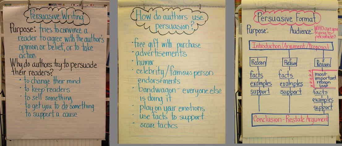 persuasive essay chocolate