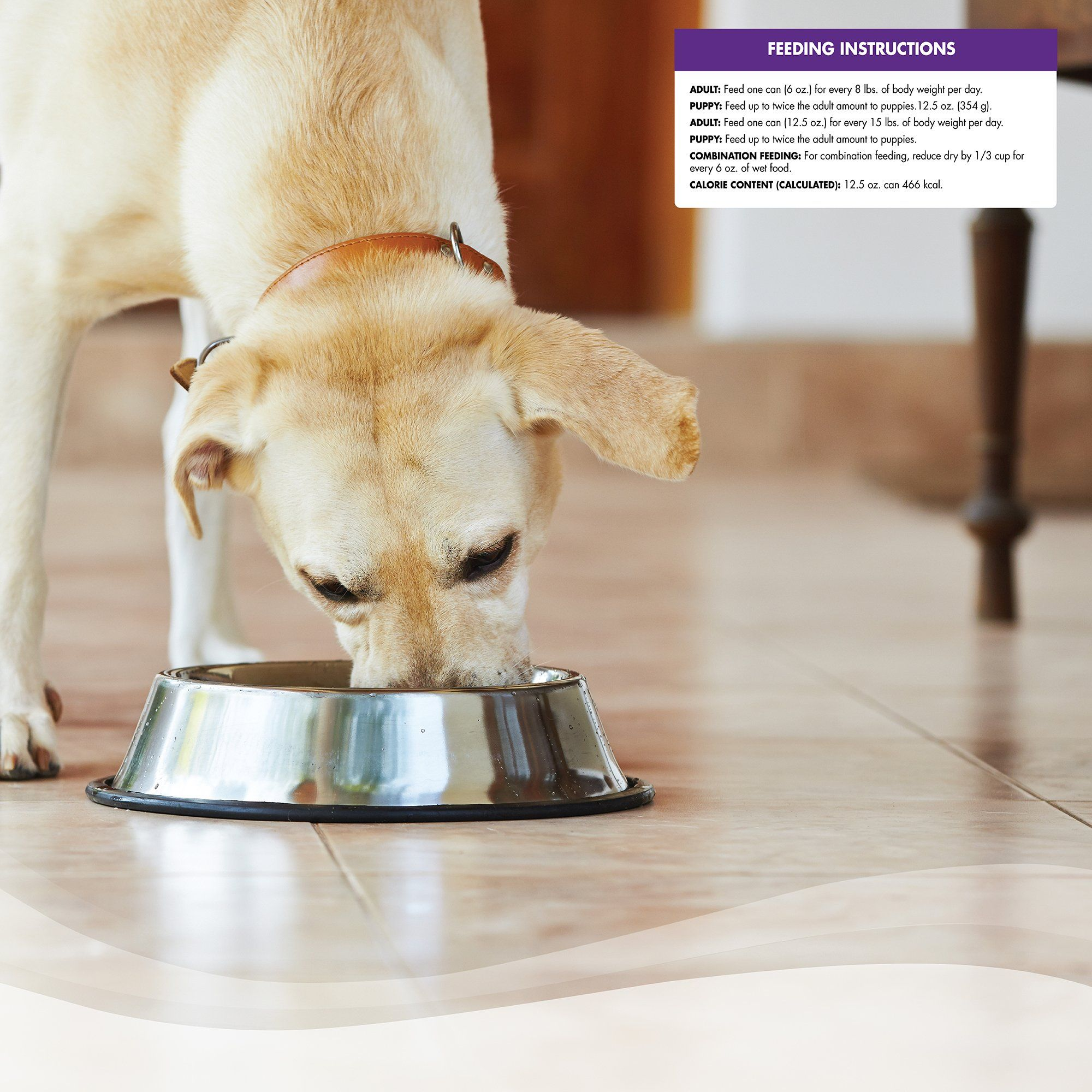 Wellness Complete Health Natural Wet Canned Dog Food Duck Canned Dog Food Dog Food Recipes Senior Dog Food Recipes