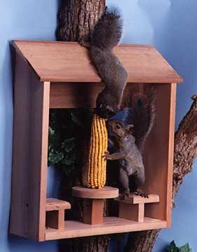 En Bois Squirrel Feeder