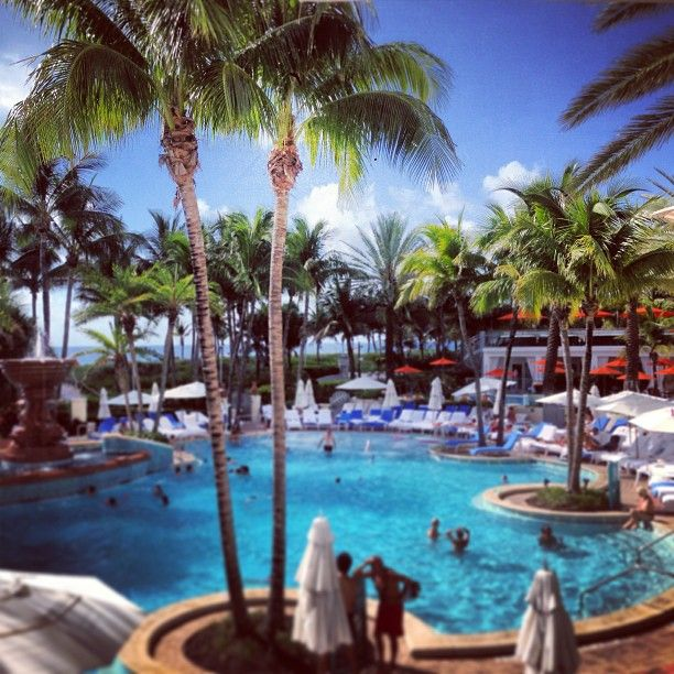 Beautiful Places In Florida To Stay: Loews Miami Beach Pool In Miami Beach, FL