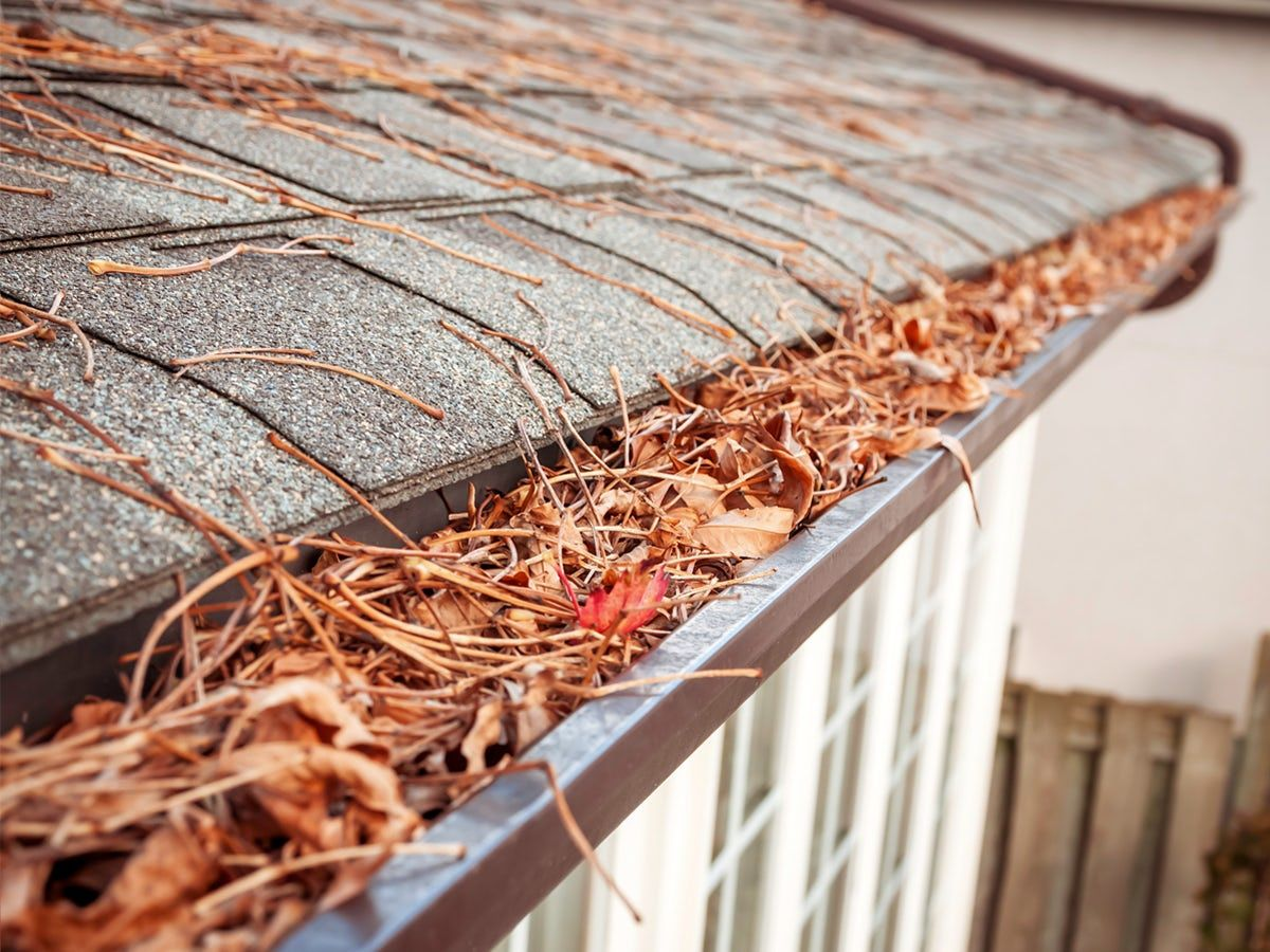 How To Clean Your Gutters Without A Ladder Cleaning Gutters Gutters Home Maintenance