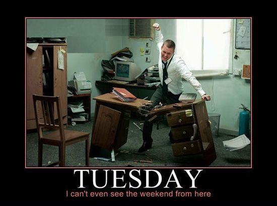 Funny Tuesday Office Google Search Funny Tuesday Images Tuesday Humor Tuesday Quotes
