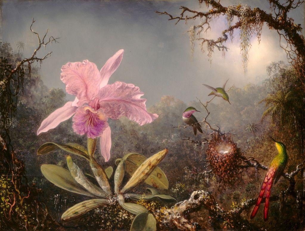 martin-johnson-heade-cattleya-orchid-and-three-hummingbirds-1871.jpg (1024×776)