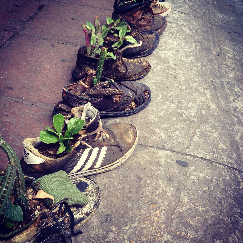 Zapatos maceta en León