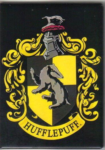 NEW UNUSED Harry Potter Slytherin Crest Photo Image Car Magnet