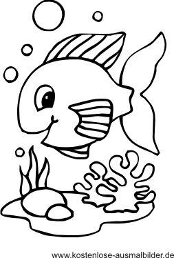 Seestern Bilder Zum Ausdrucken Google Suche Malvorlagen Tiere Ausmalbilder Kinderfarben