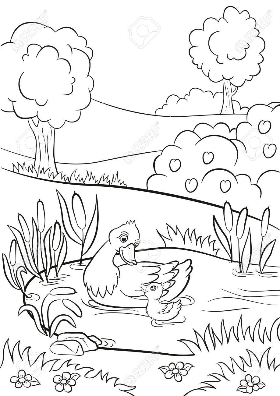 Coloring Pages Kind Duck And Little Cute Duckling Swim On The Pond There Are Trees Bushes Flower Animal Coloring Pages Spring Coloring Pages Coloring Pages [ 1300 x 919 Pixel ]