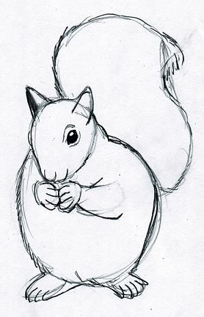 Simple Drawings Of Animals Drawing Animals Animal Sketches