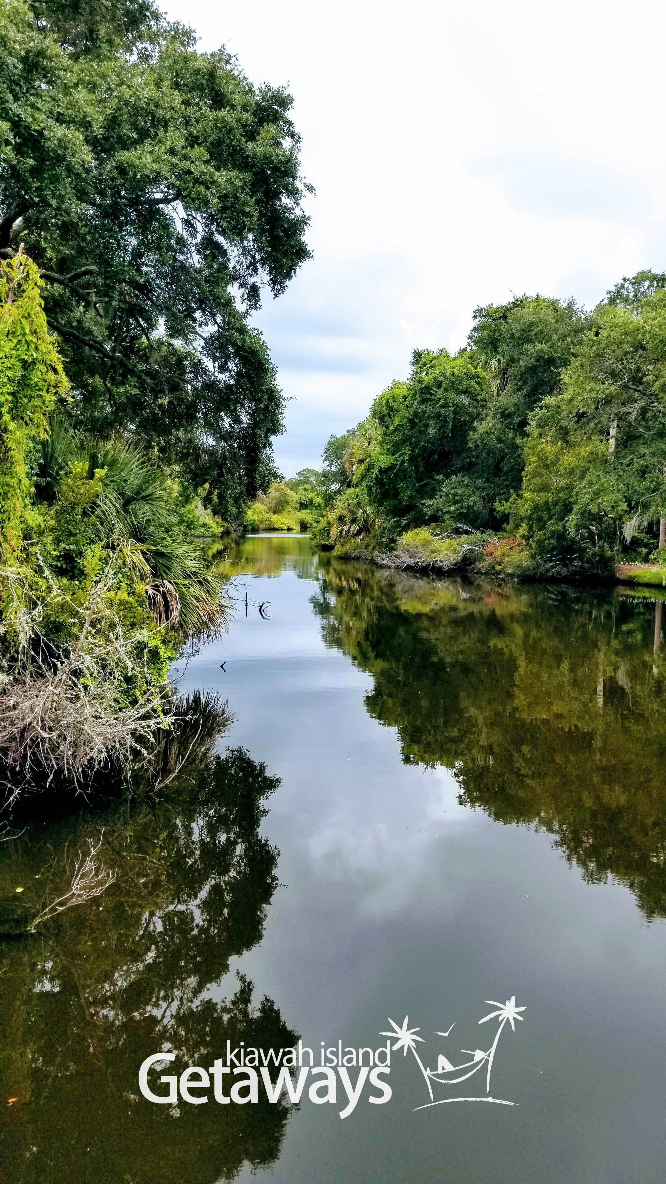 Enjoy Spotting Signs Of Nature In Kiawah S Lagoons Kiawah