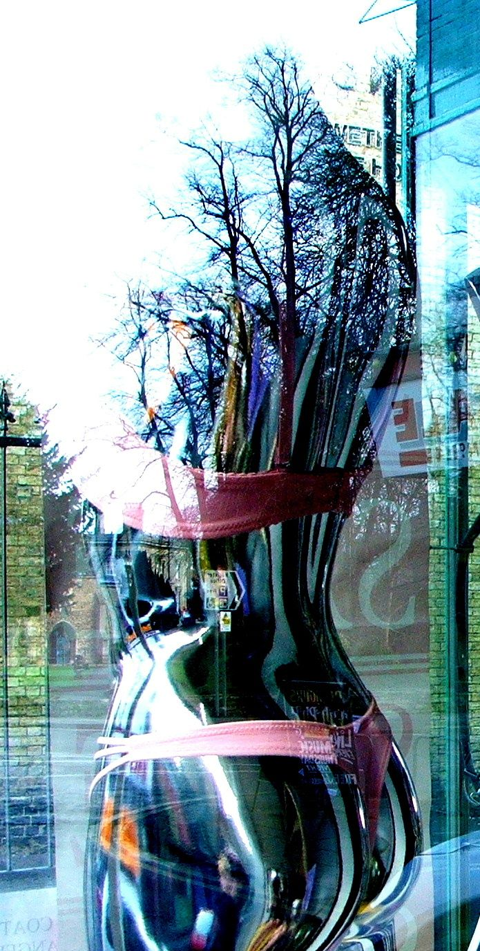 I really enjoy how the trees are coming out of the figure!  ~Window Shopping 2 by *vandalised