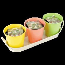 keukenkruiden in pot 3st incl.grond div