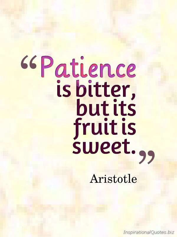 Patience is bitter, but it's fruit is sweet. - Aristotle