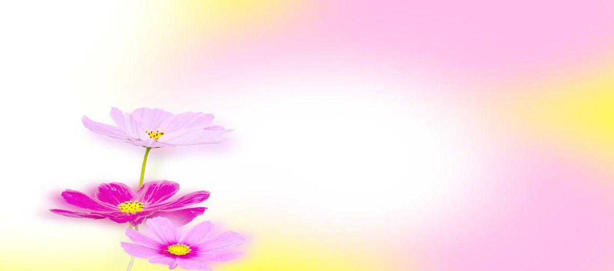 الخيال الوردي الزهور الخلفية Flower Backgrounds Abstract Artwork Abstract