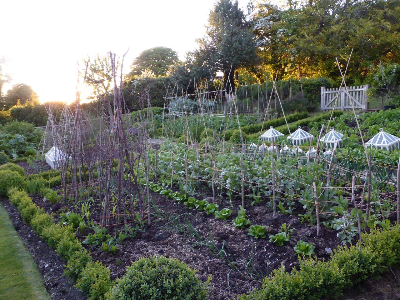 Vegetable Garden On A Slope In Tinnock Gardening Garden Sloped