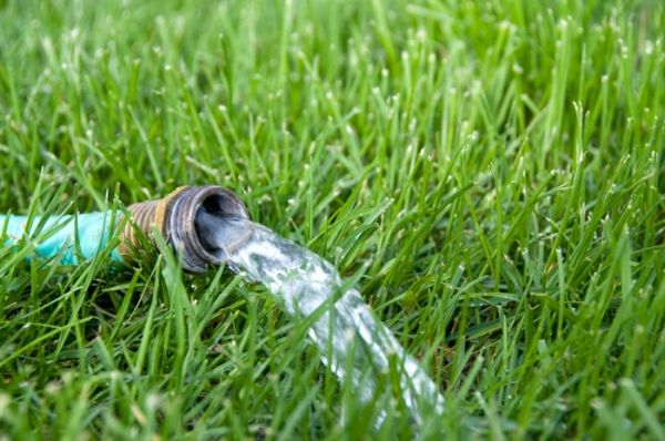Water Your Summer Garden Best Ways To Water Vegetables 400 x 300