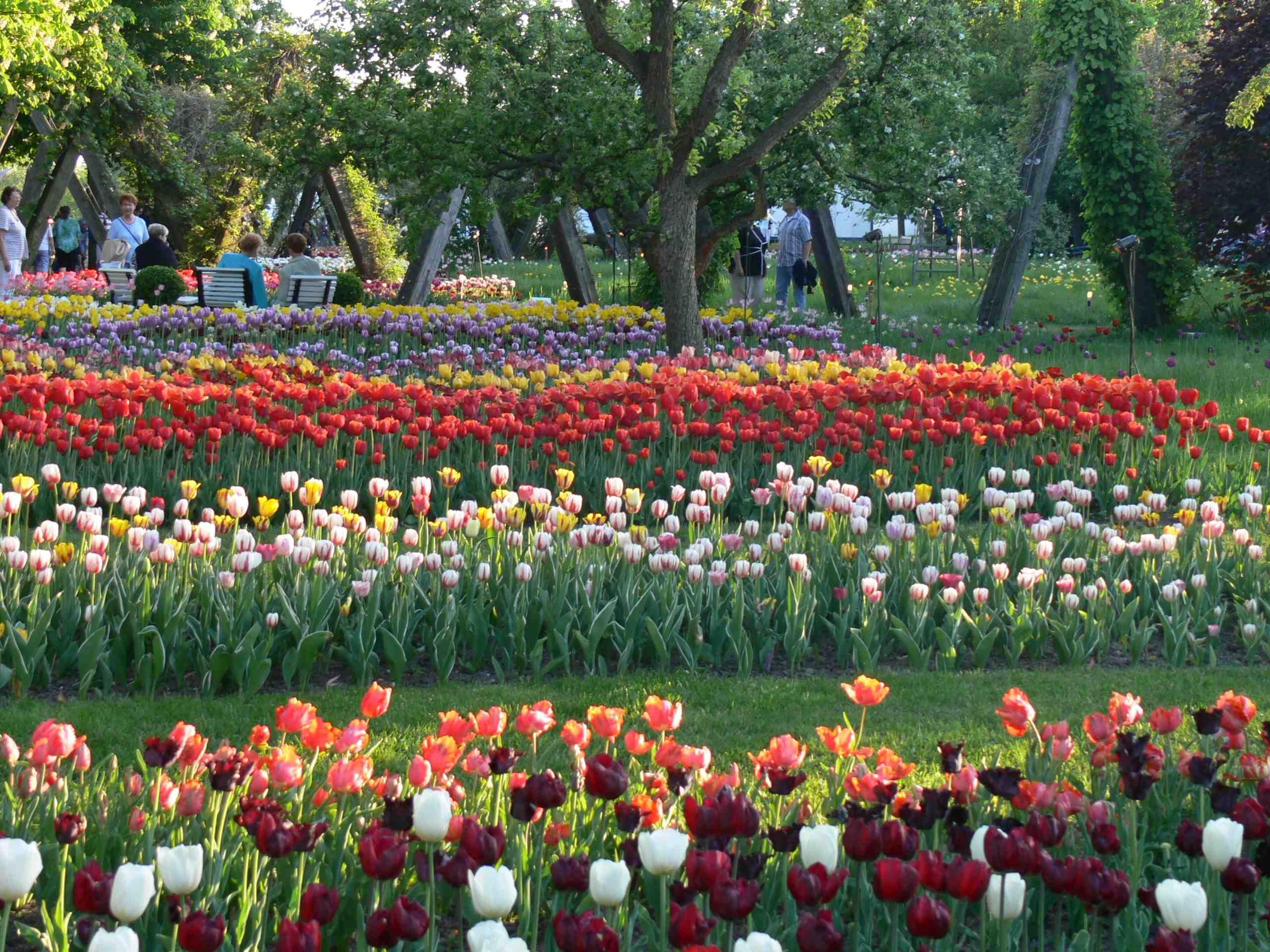 Britzer Garten Garten Berlin Flammen