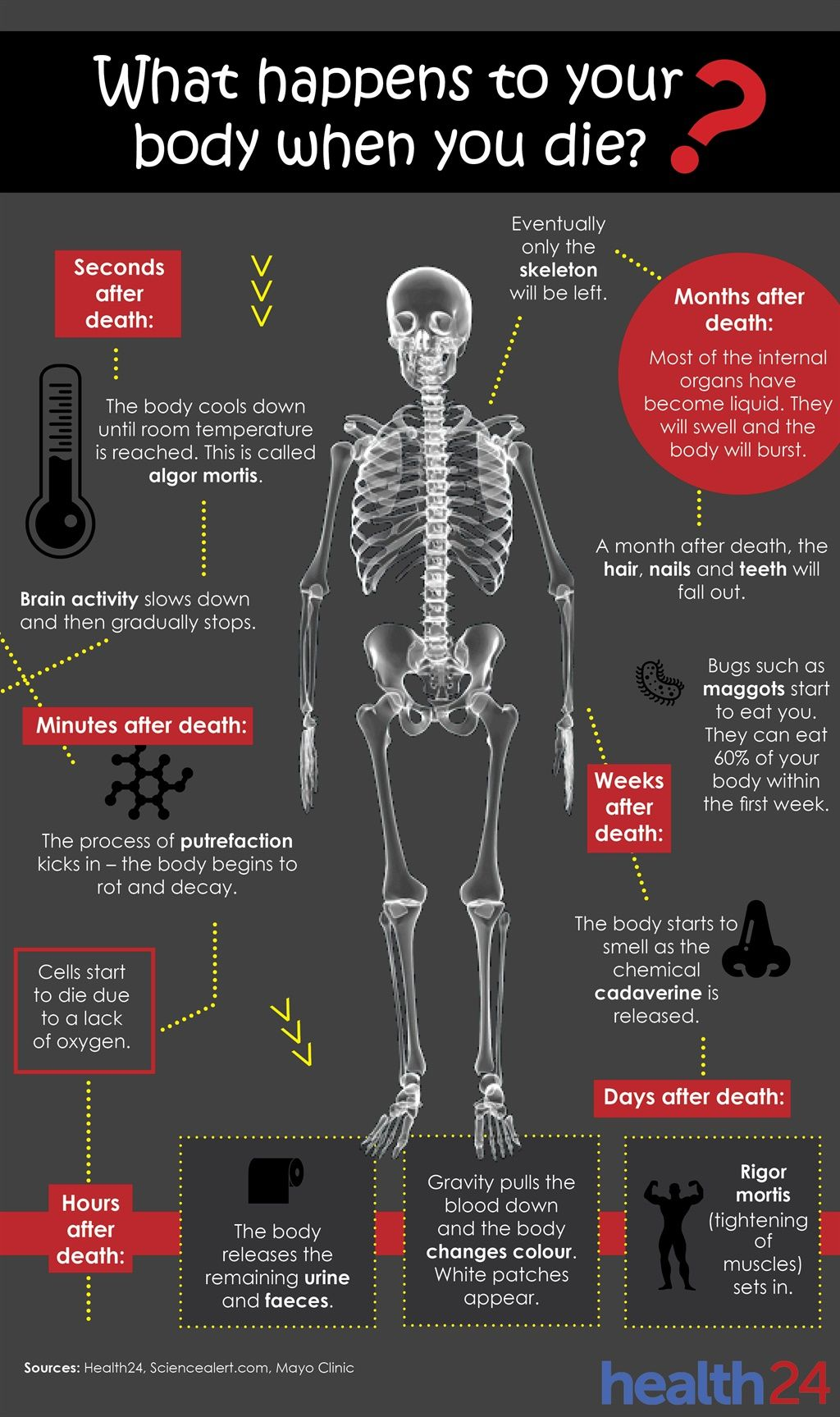 SEE: What happens to your body after you die?   Dead People ...