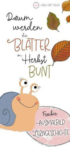 Schneckelinchen erklärt: Darum werden die Blätter im Herbst bunt. - Geschichten für Kinder mit Wilma