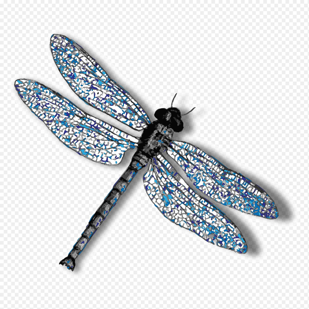 Dragonfly Max Png Dragonfly Results Integrity Va Services 1667 1667 Png Download Free Transparent Backg Dragonfly Dragonfly Tattoo Design Dragonfly Movie