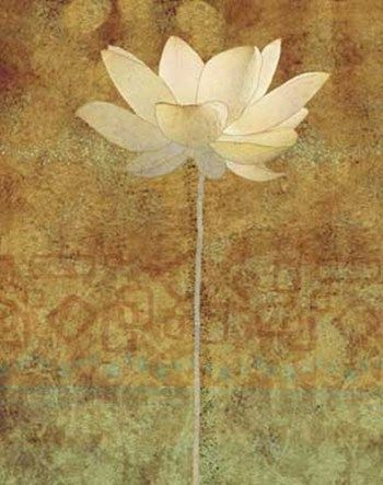 Lotus Flower Abstract Art Google Search