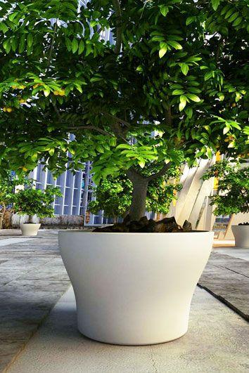 Grand Pots Bacs Jardinieres En Beton Tuinpotten Planters Tuin Inspiratie