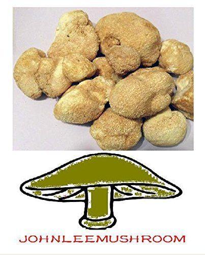 Hericium Pilz 760 Gramm, die auch als Löwenmähnen oder Affenkopfpilz, http://www.amazon.de/dp/B00UFF1LAI/ref=cm_sw_r_pi_awdl_df6dwb0AG7FE1
