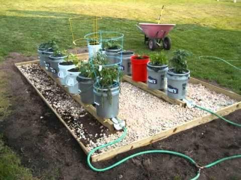 Self Watering Rain Gutter Grow System From Douglassville Pennsylvania Nice Setup Grow System Self Watering Rain Gutters