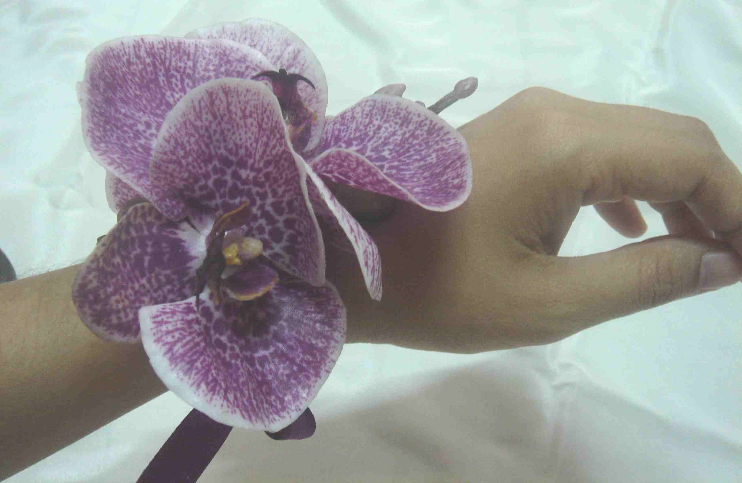 Best Flowers for corsage Orchid corsage purple Prom Pinterest