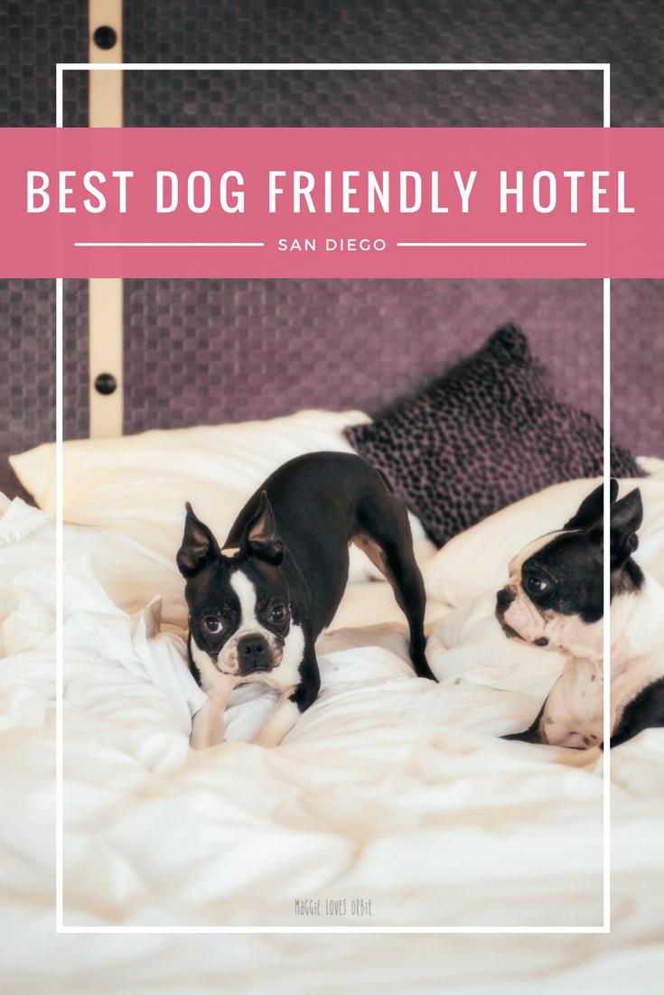 Best Dog Friendly Hotel San Go Gaslamp Downtown
