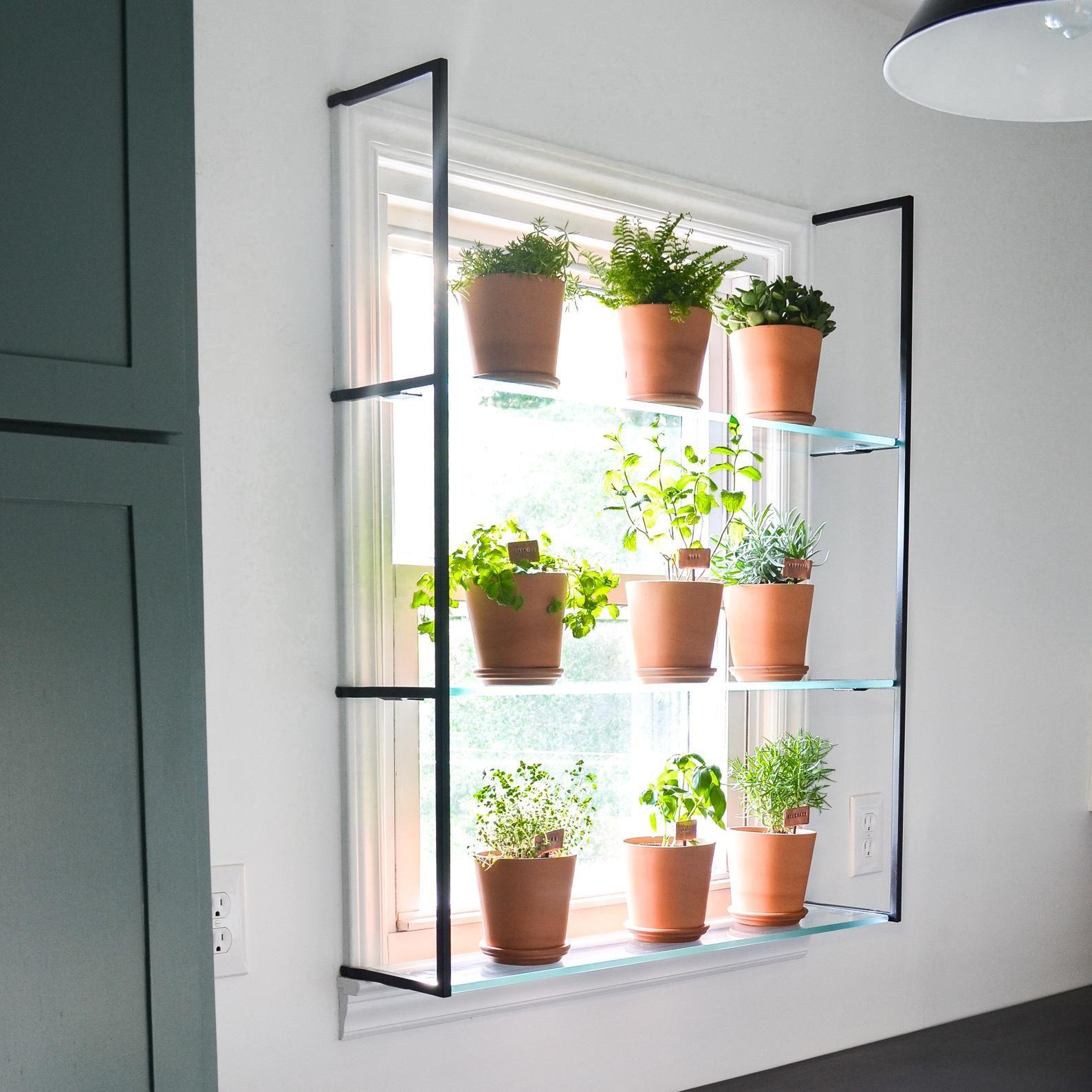 Pair Of Steel Shelf Brackets For A Window Garden Simplicity In The South Window Shelf For Plants Garden Windows Window Plants