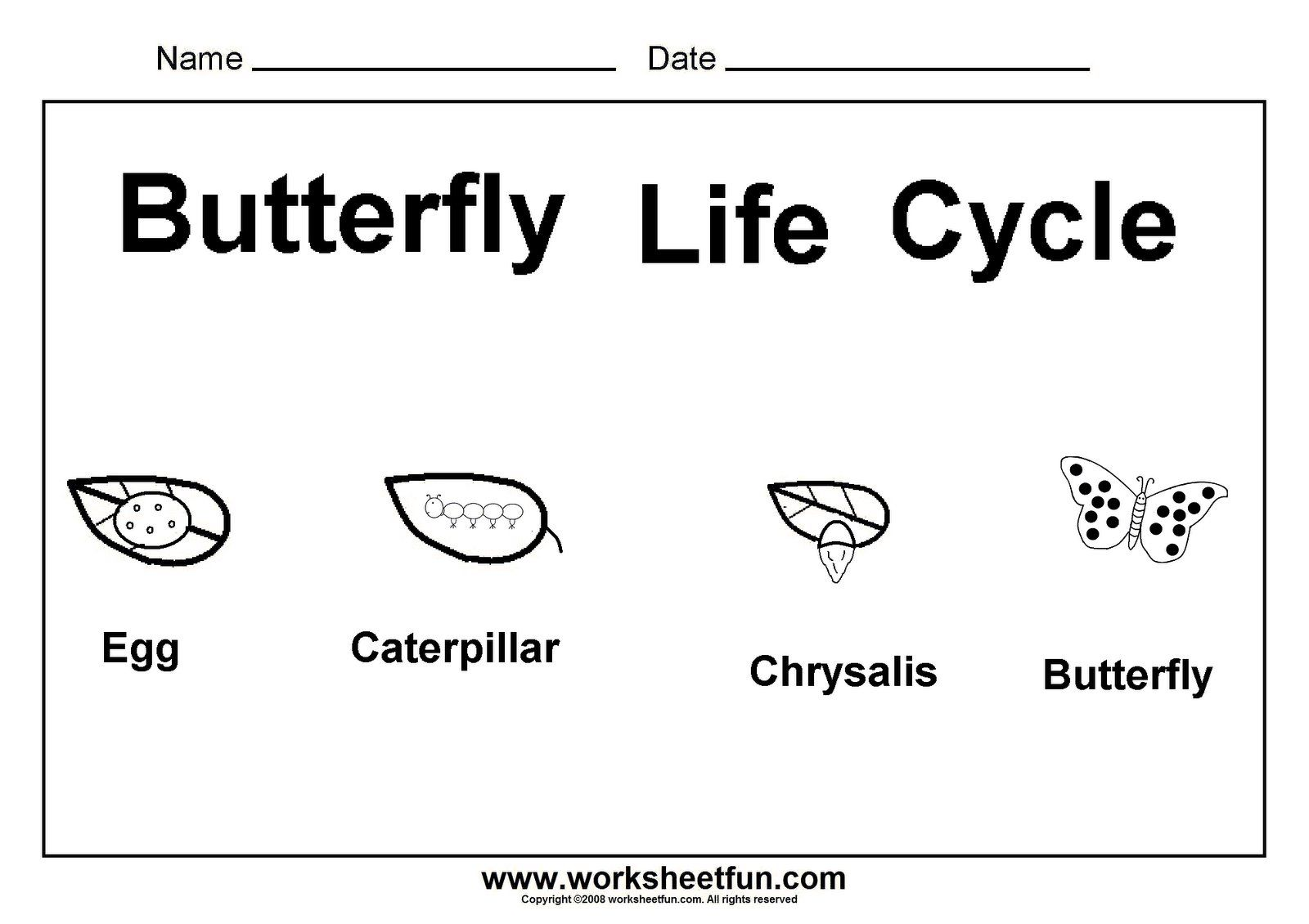math worksheet : butterfly life cycle  butterfly unit  pinterest  butterfly life  : Kindergarten Science Worksheets