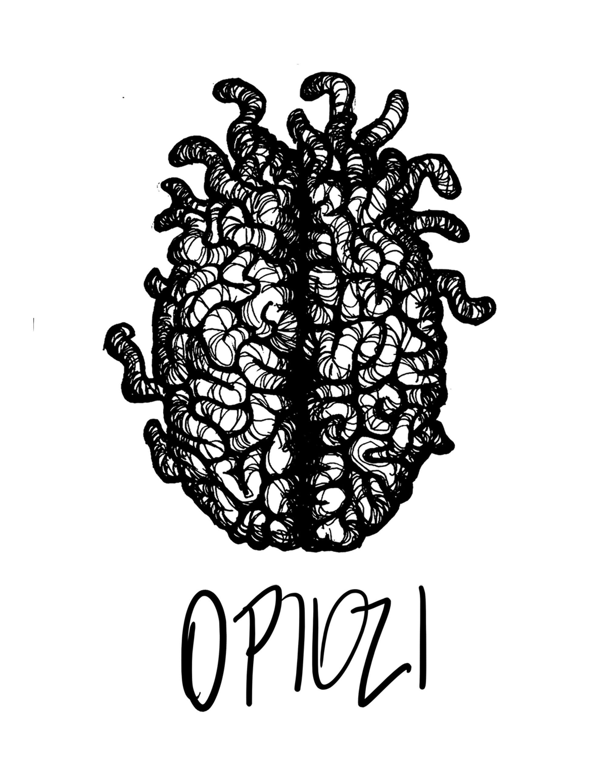 Cérebro de minhoca