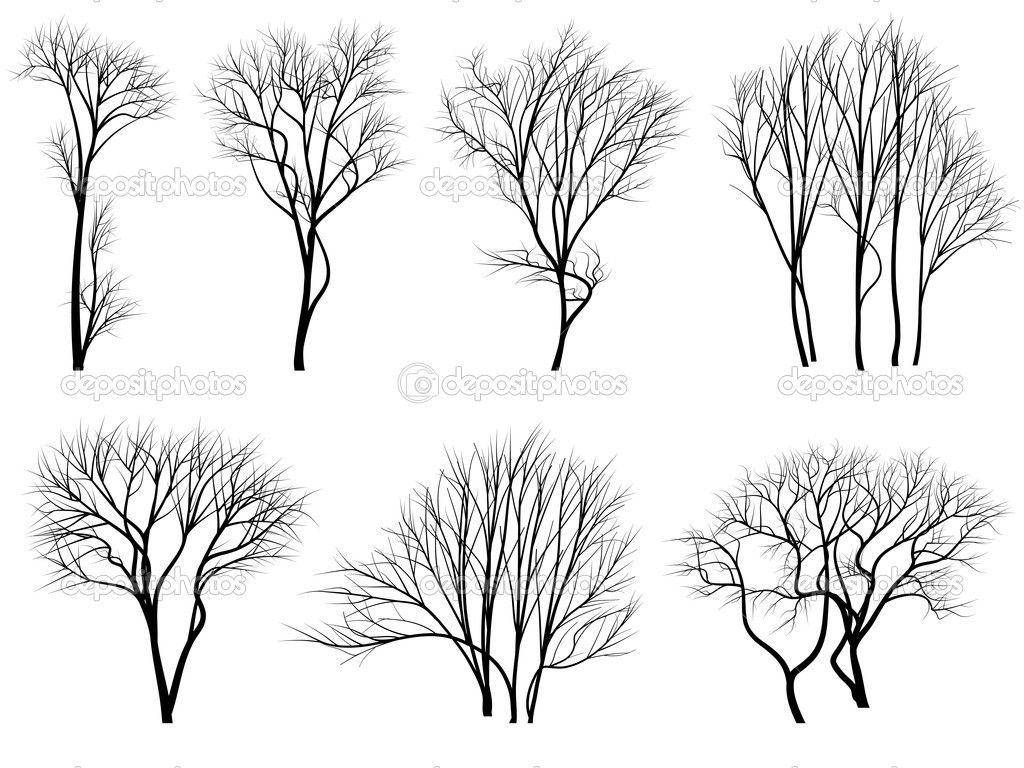 tree illustration vector  Google Search  tree illustrations