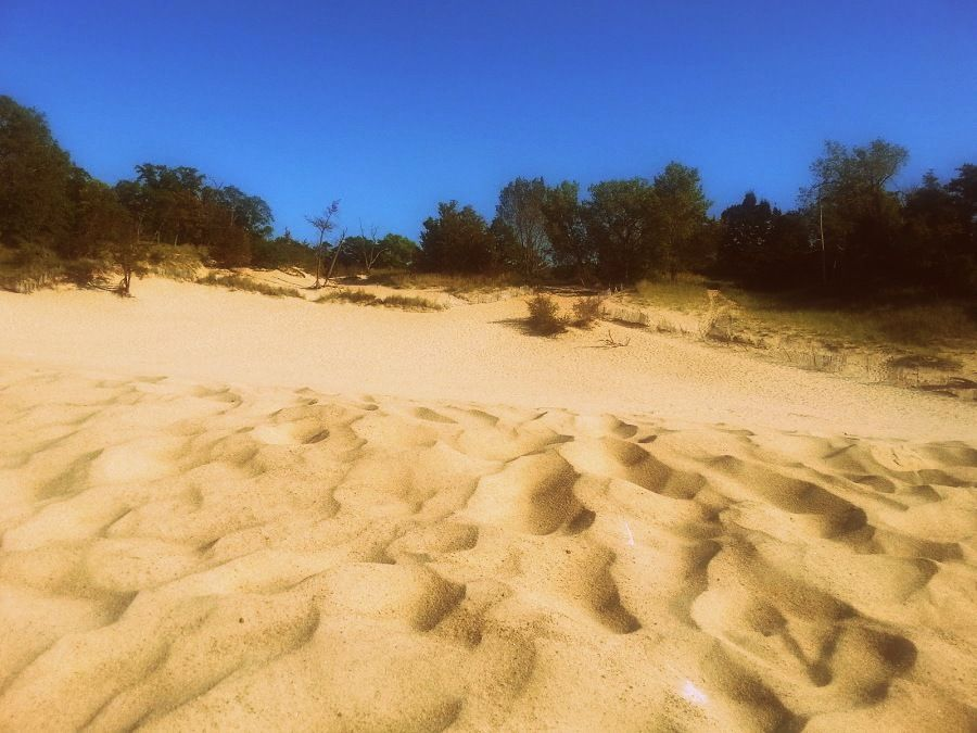 Indiana dunes 2015 indiana dunes beach indiana