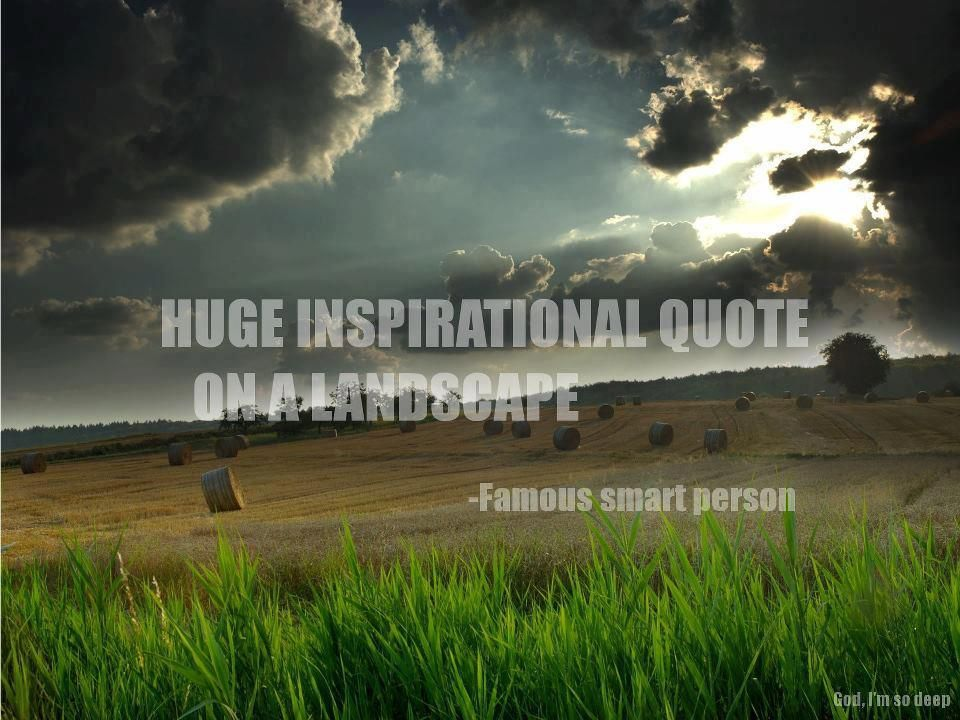 Huge inspirational quote on a landscape - by a famous smart ...