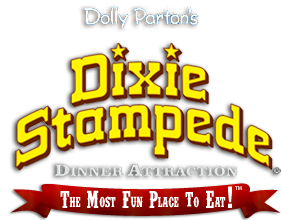"""I must admit I love all things """"down home"""" so my family and I visit Dixie Stampede every time we go! Don't leave Branson without seeing this show..it's so much fun!"""