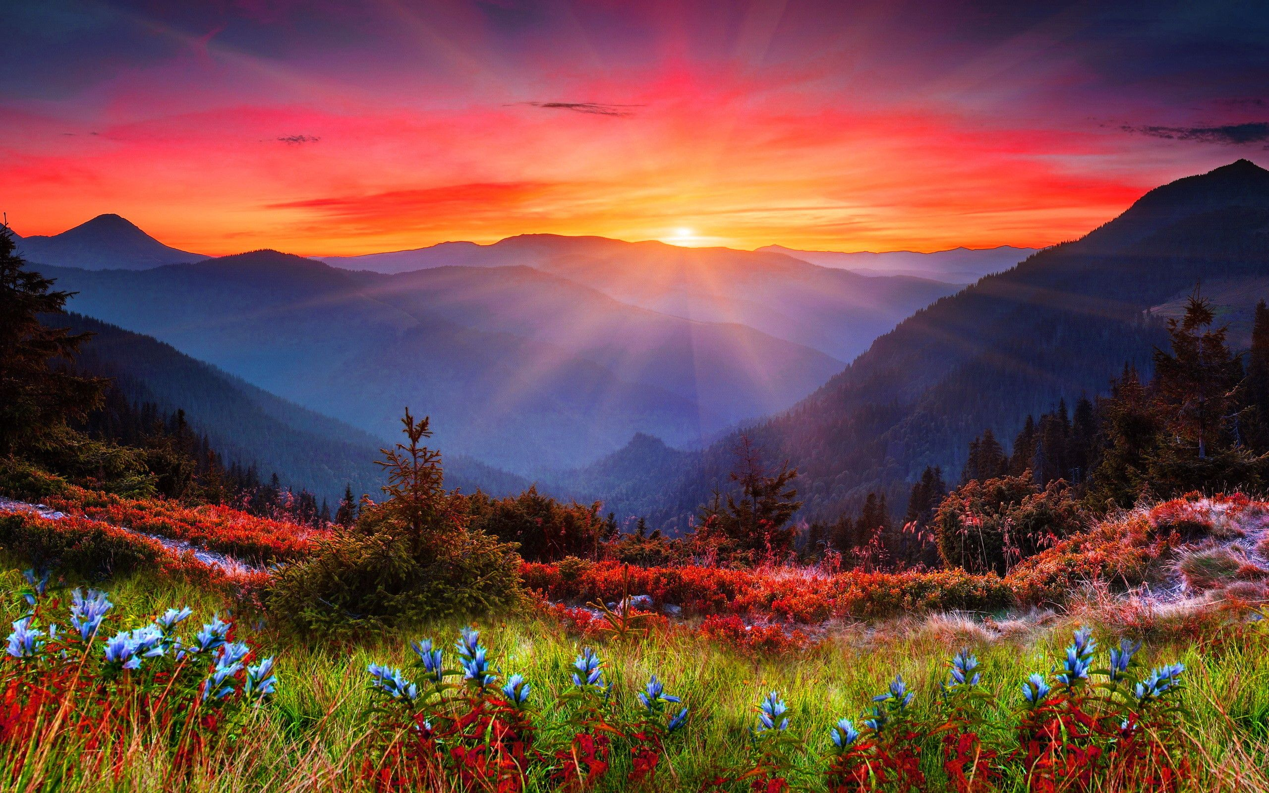 Res 2560x1600 Mountain Sunset Wallpaper 1080p Zu5 In 2020 Nature Photography Scenery Mountain Sunset