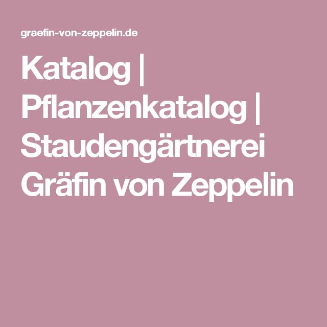 Katalog | Pflanzenkatalog | Staudengärtnerei Gräfin Von Zeppelin
