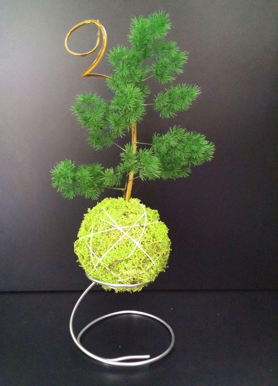 kokedama stabilisé art japonais ikebana bonsai sans entretien diam ...