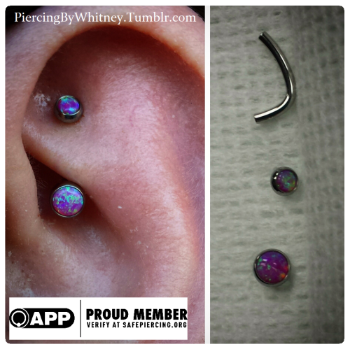 6c14707fe Rook piercing by Whitney Thompson of Tattoo Charlies. Jewelry by Anatometal.