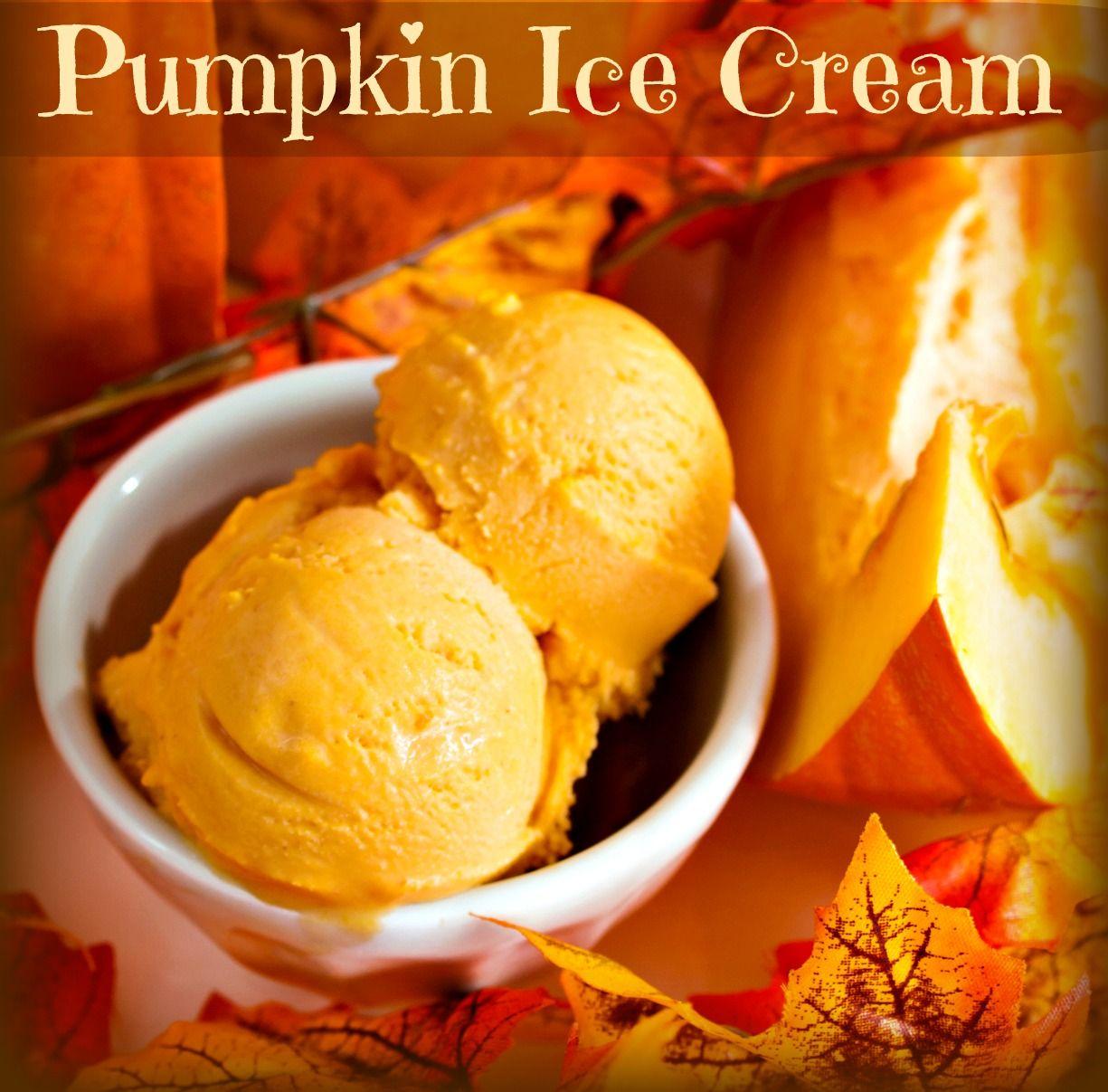 Dairy Free Coconut Milk Pumpkin Ice Cream
